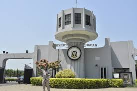 43 Bags First Class, UI Technology Faculty as NSE Conducts 293
