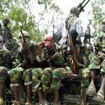 Soldier, 42 fleeing terrorists die in Niger gun duel