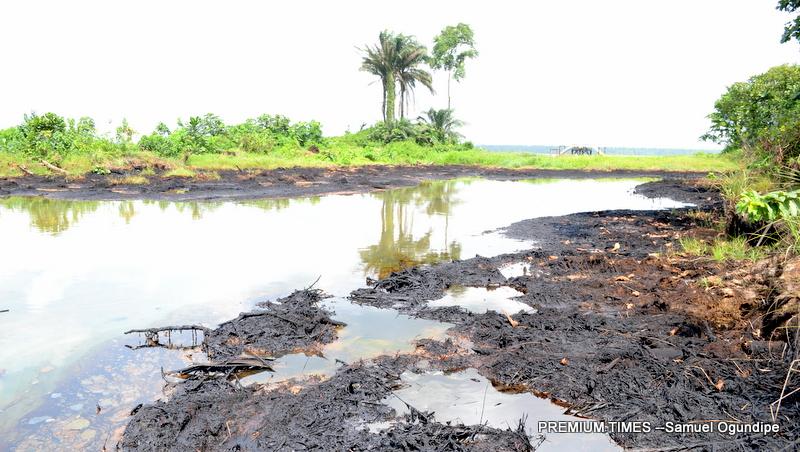 SPDC's pipeline spills 276 barrels of crude in April – Report