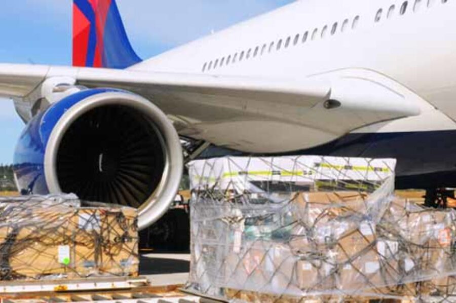 Air cargo bureaucracy, charges stifle $250bn agro-export industry