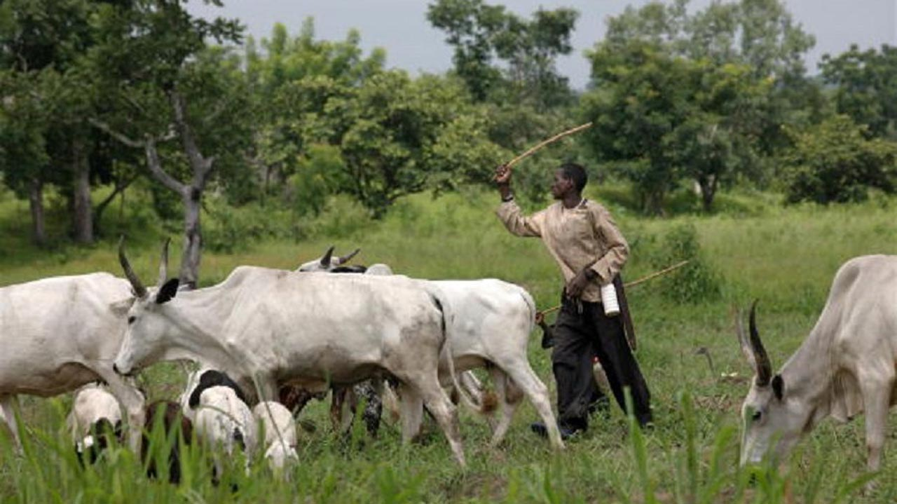 Ortom, Ohanaeze, Falana kick over unknown grazing routes
